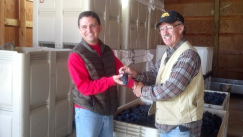 "Fred Robinson of Robinson Family Vineyard ""formally"" passes over his harvested grapes to Dave."