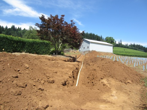 View from the trench up to the barn.